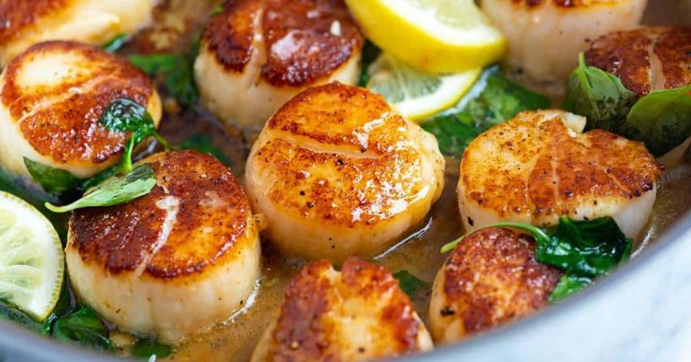 Valuable Details About Raw Scallops