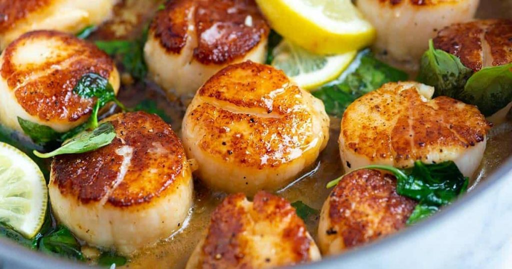 Scallops Dishes