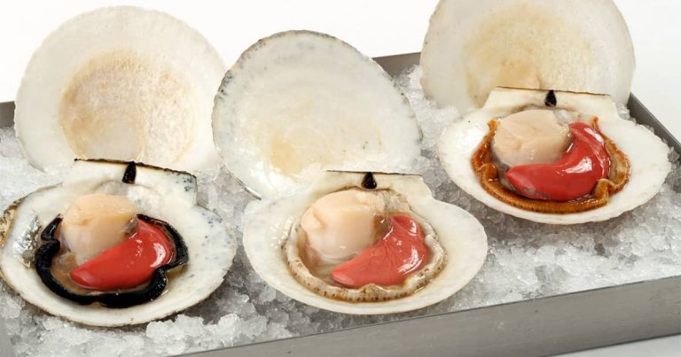 A Guide To Buying Fresh Scallops