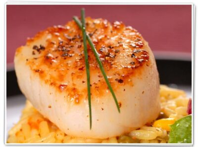 Learn about Sea scallops